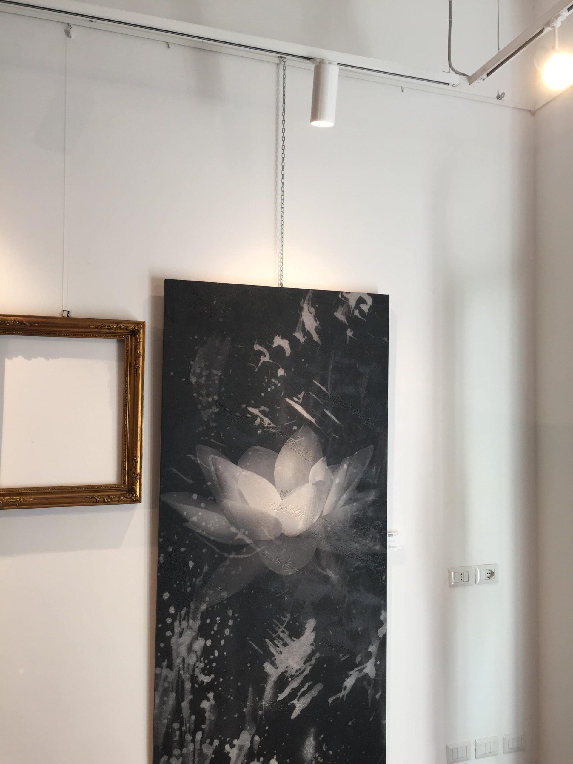 galleria 809_05-LR